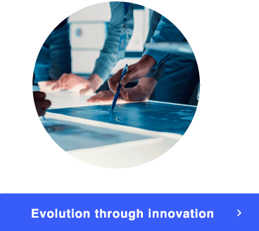 Evolution through innovation